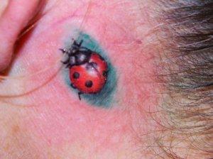 ladybugtattoo